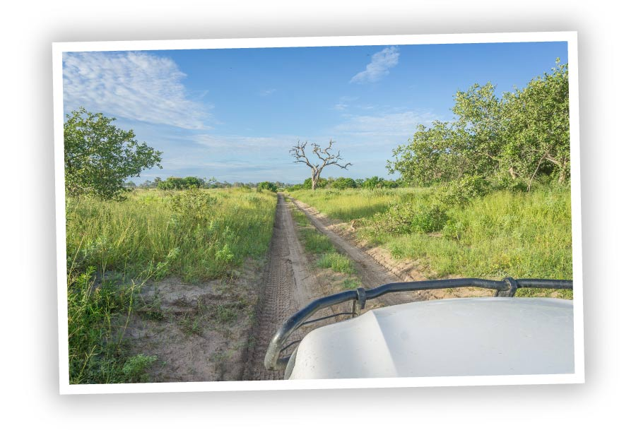 Explore-Botswana-What-We-Offer_Off_Road_Tours-01