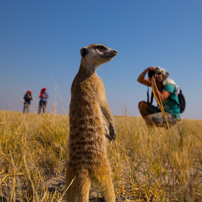 Explore-Botswana-route_highlights_End-of-tour-Departure-Arrival-Home-02
